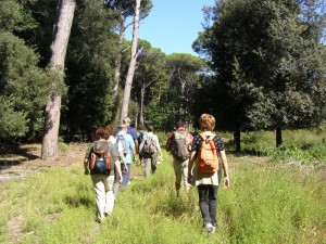 parco san rossore 1