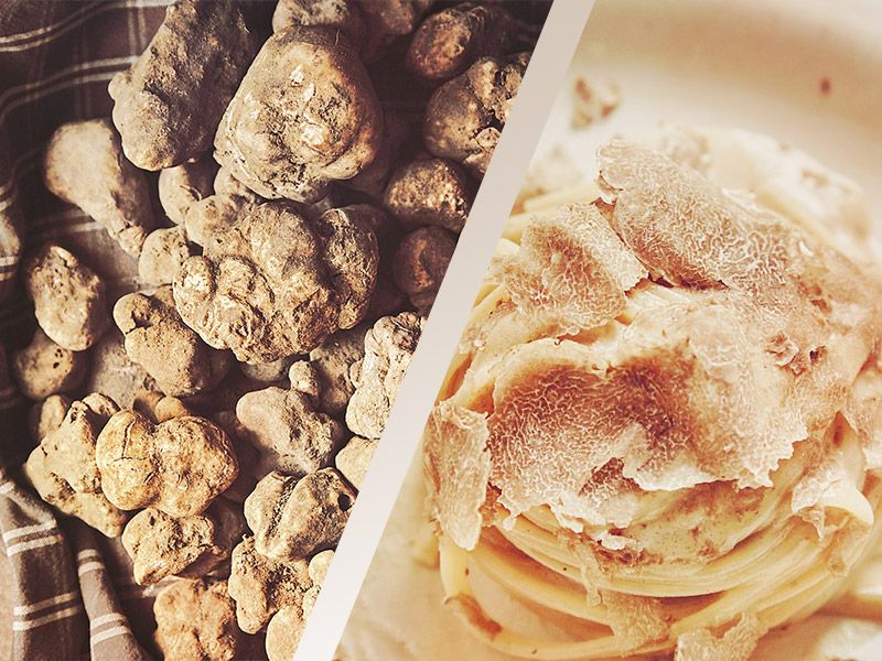 Itinerario degustazione Tartufo Toscana - Caravanbacci