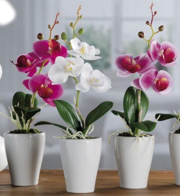 orchidea artificiale in vaso terracotta h 30 caravanbacci